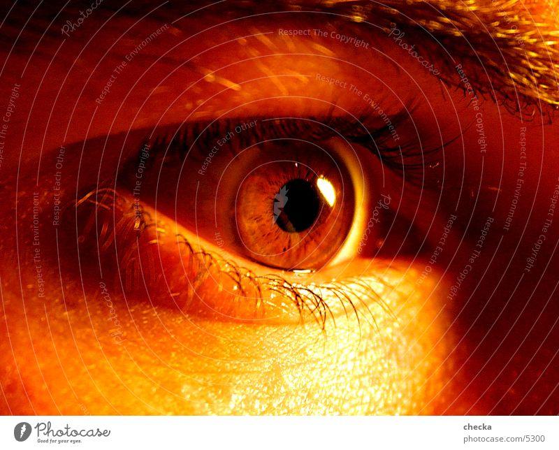 noch'n Auge Mann Angst Pupille