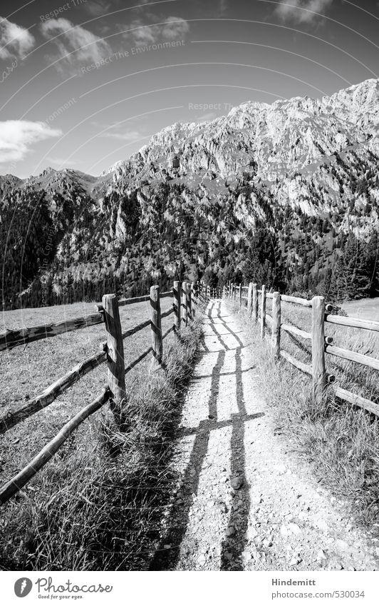 Dieser Weg Ferien & Urlaub & Reisen Umwelt Natur Himmel Wolken Sommer Wiese Wald Hügel Felsen Alpen Berge u. Gebirge Gipfel Dolomiten Wege & Pfade Ferne hoch