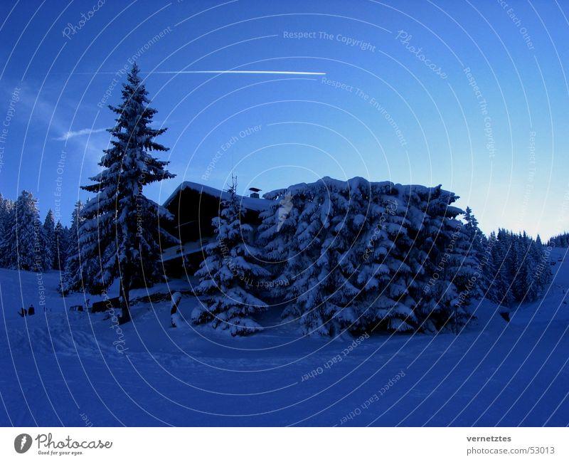 Skihütte Himmel Schnee Flugzeug Hütte Tanne Kondensstreifen