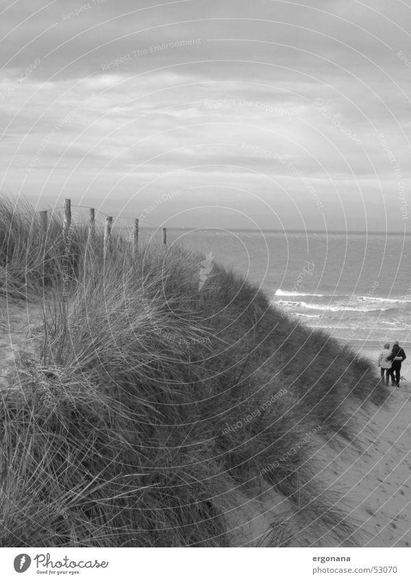Dünenspaziergang Meer Liebespaar Gras Strand Belgien Stranddüne Paar Himmel Schwarzweißfoto paarweise
