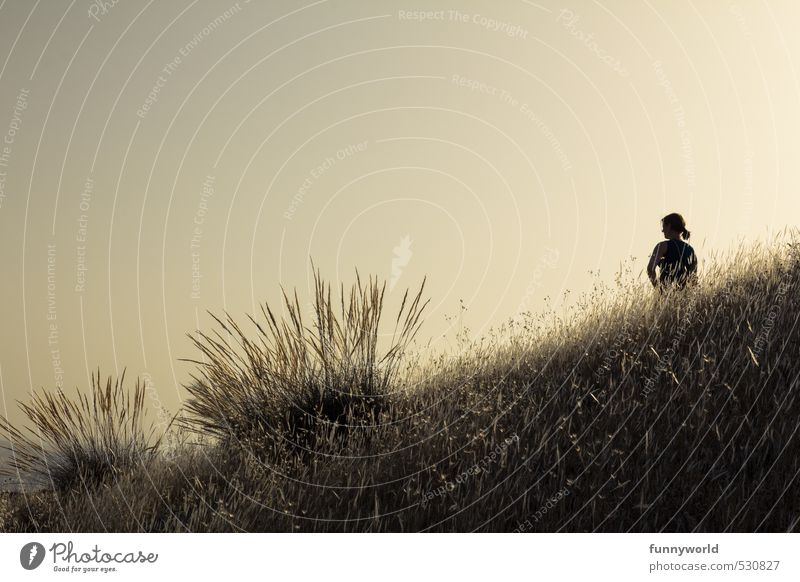 der Moment Glück Ferien & Urlaub & Reisen Ferne Freiheit Sommerurlaub feminin Junge Frau Jugendliche 1 Mensch Erde Himmel Wolkenloser Himmel Schönes Wetter Gras