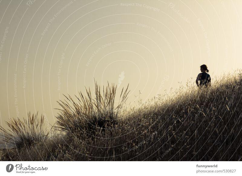 der Moment Mensch Himmel Ferien & Urlaub & Reisen Jugendliche schön Sommer Einsamkeit Junge Frau Ferne feminin Gras Freiheit Glück Kraft Erde Zufriedenheit