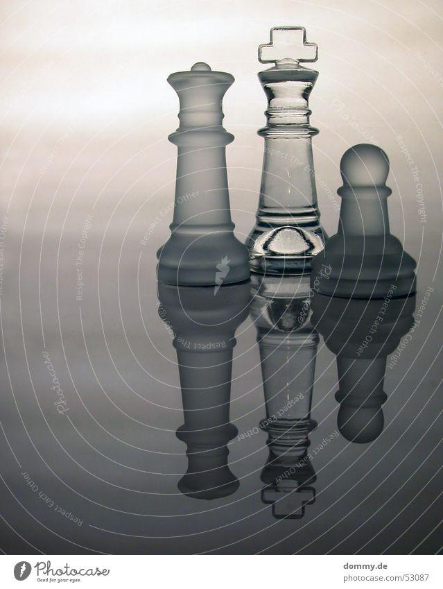 Familie Spielen stehen Reflexion & Spiegelung grau weiß durchsichtig König Dame Schachbrett milchig Glätte Klarheit Glas Kurve Rücken königlich Schachfigur
