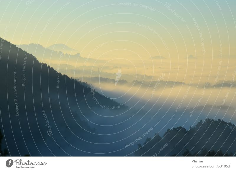 Morgennebel am Brand Natur Ferien & Urlaub & Reisen blau schön Erholung Einsamkeit Landschaft Wolken Wald Berge u. Gebirge gelb hell Horizont wild Nebel Idylle