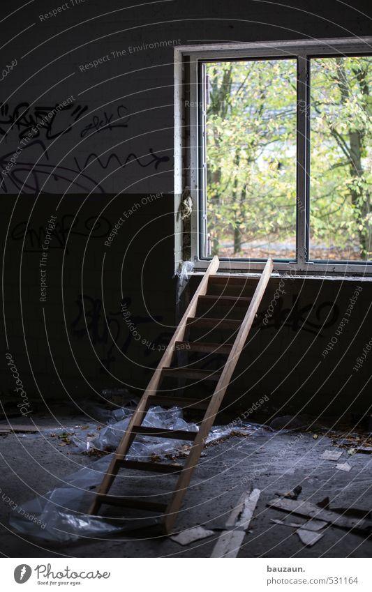 ausweg suchen. Baustelle Leiter Baum Sträucher Garten Wald Industrieanlage Fabrik Ruine Mauer Wand Fenster Stein Holz gebrauchen dunkel grün Optimismus Erfolg