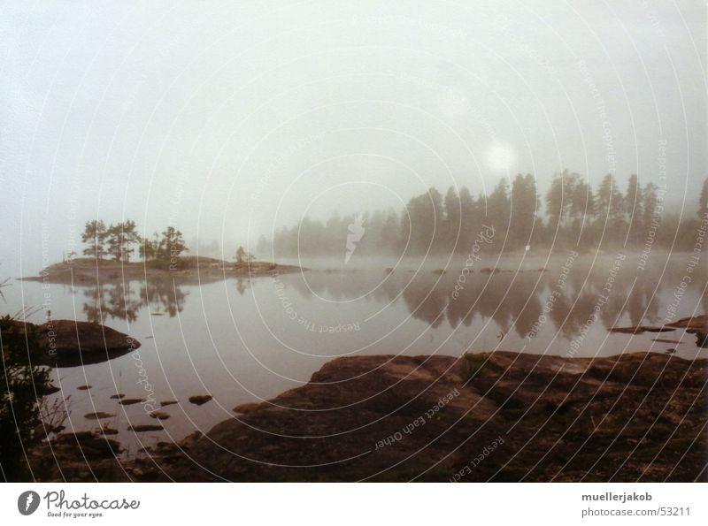 Morgennebel 2 Nebel schlechtes Wetter Wolken weiß See Wald ruhig Einsamkeit Spiegelbild Himmel blau Wasser Schweden Insel Ferne Glätte