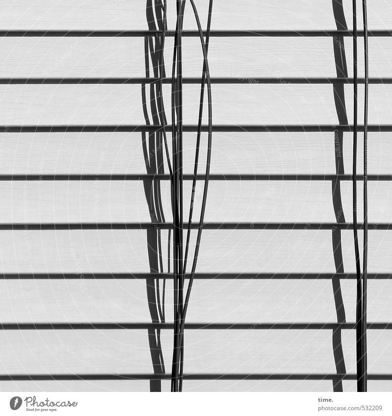 Welt am Draht Stadt Wand Wege & Pfade Mauer Fassade Ordnung ästhetisch Kommunizieren Technik & Technologie Telekommunikation Kreativität Kabel Konzentration