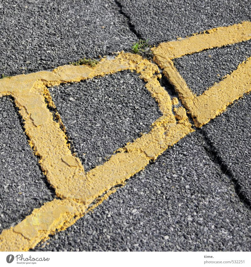 Brötchenholen mit particula, Hinweg Verkehr Verkehrswege Straße Wege & Pfade Beton Betonplatte Betonboden Riss Spalte Bürgersteig Stein Zeichen