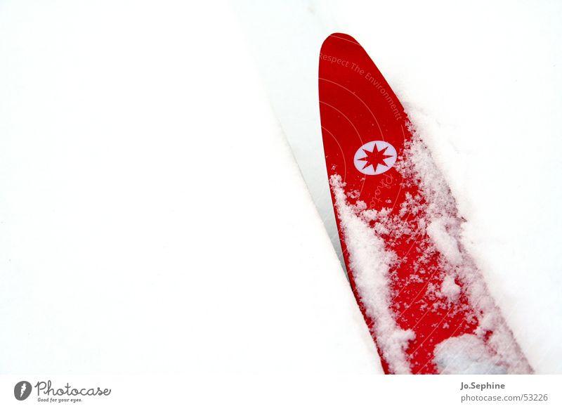 Rot auf Weiß I weiß rot Winter kalt Schnee Sport Freizeit & Hobby Frost Skifahren Skier Jahreszeiten Sport-Training Wintersport Winterurlaub Skilanglauf