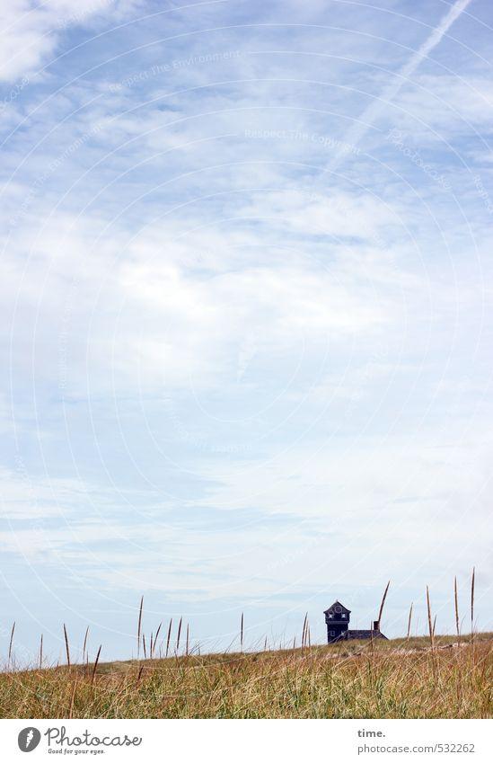 Dünenkatze Himmel Natur Pflanze Einsamkeit Landschaft Wolken Haus Umwelt Gebäude Architektur Horizont Erde Schönes Wetter Kommunizieren beobachten Turm