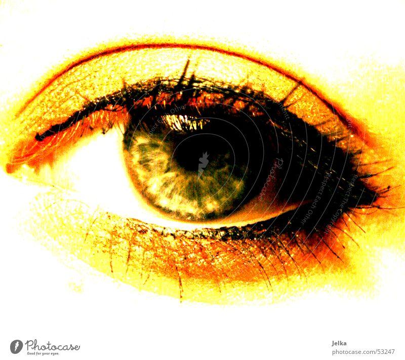 augenschmaus Schminke Wimperntusche Auge grün geschminkt Farbfoto Frauenaugen Pupille gelb gold 1 Kajal Nahaufnahme Detailaufnahme Augenfarbe