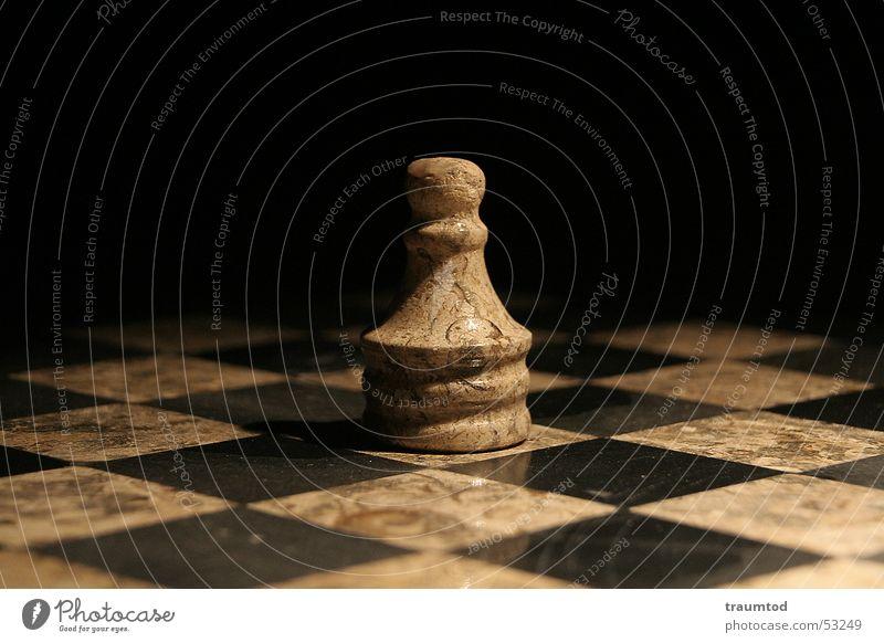 Last Man Standing Schachfigur Spielen Spielzug Spielbrett Spielfeld Schachbrett Makroaufnahme Pferd schwarz weiß Holzbrett chess figures board Marmor Dame König