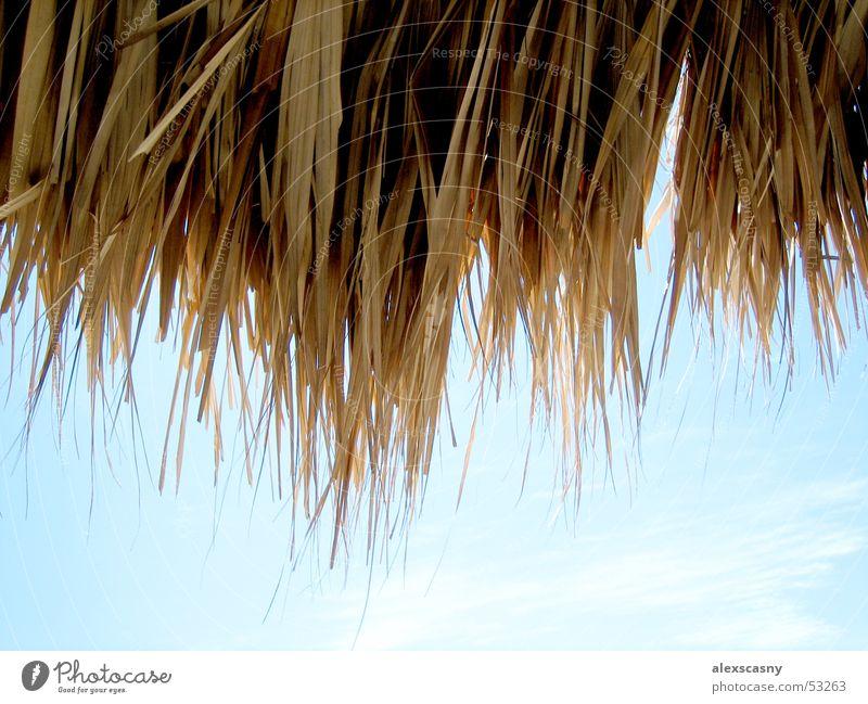 Strohdach Wolken Schönes Wetter Kuba Blauer Himmel Venezuela Strohdach