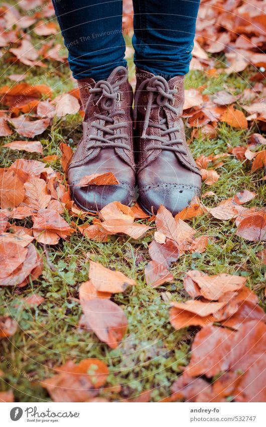 Nasse Schuhe. Fuß Mode Leder stehen braun Klima halbstiefel Blatt nass herbst Herbstlaub 2 Lederschuhe Bodenbelag Gras Regen Herbstwetter Schnürstiefel Schnur