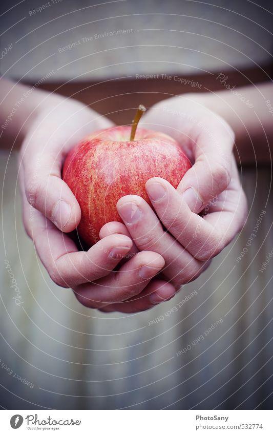 Äpfelchen, Äpfelchen... Apfel Mensch Hand Finger 1 hell kalt retro braun rot Schneewittchen Märchen Farbfoto Außenaufnahme Nahaufnahme Dämmerung Unschärfe