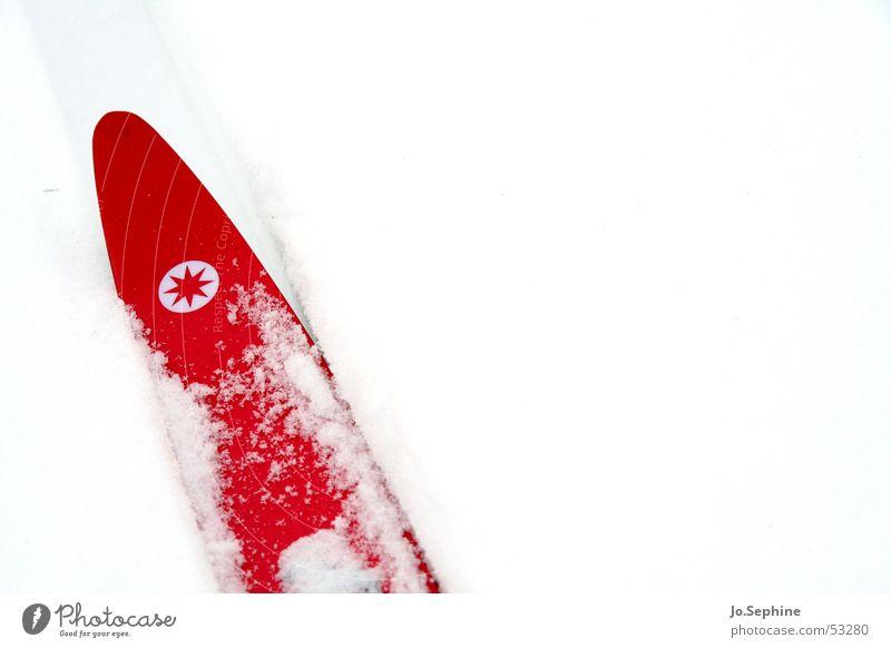 Rot auf Weiß II weiß rot Winter kalt Schnee Sport Freizeit & Hobby Frost Skifahren Skier Jahreszeiten Wintersport Winterurlaub Skilanglauf