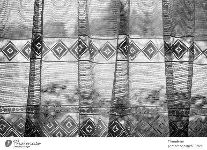 An was wollte ich mich erinnern? Umwelt Natur Winter Schnee Baum Wald Gardine Blick grau schwarz weiß Gedanke Muster Hecke Hügel Schwarzwald Fensterscheibe