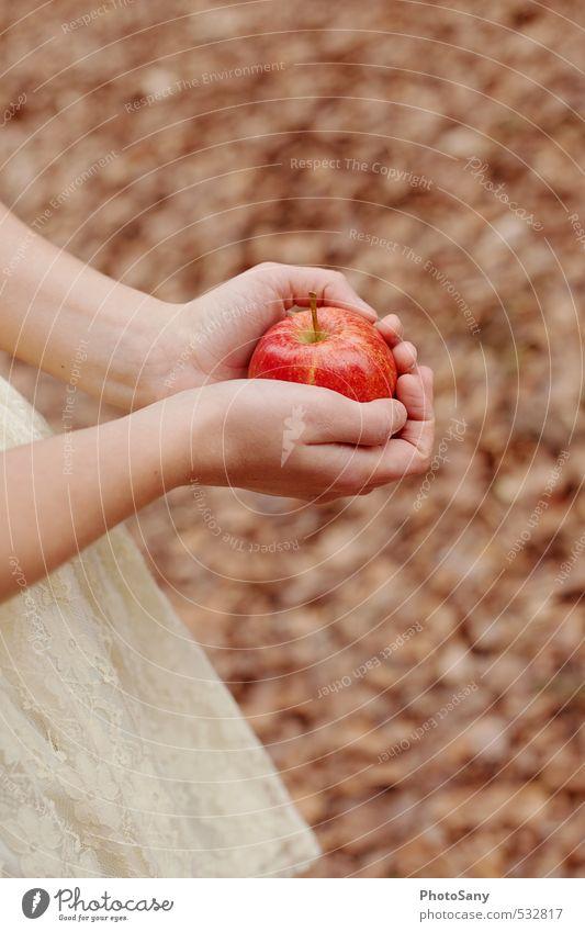 Diese Geschichte mit dem Apfel... Hand rot Blatt Wärme hell braun Finger weich retro Apfel Märchen Schneewittchen