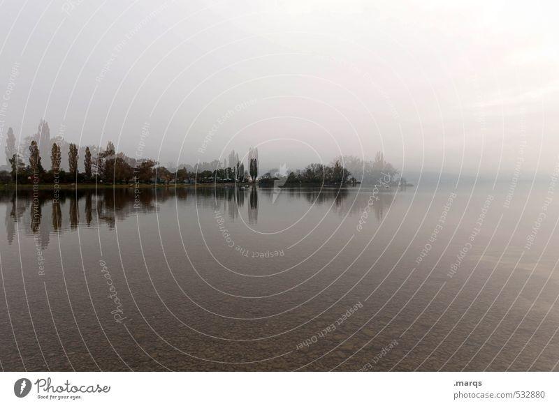 Spiegelungen | Bodensee Himmel Natur Baum Landschaft Umwelt Stil außergewöhnlich Horizont Stimmung Lifestyle Klima Seeufer Irritation Doppelbelichtung