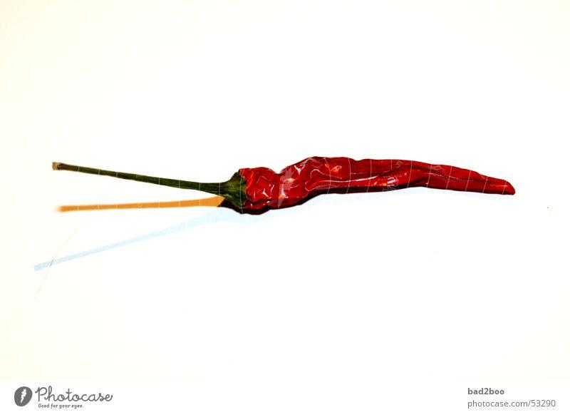 Chilischote Kräuter & Gewürze feurig Schote rot Pflanze Ernährung Lebensmittel Scharfer Geschmack würzig brennen hitzig pepper genießen beißen spicy sharpness