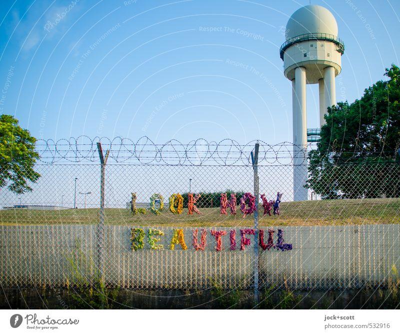 LOOK here! schön Sommer Baum Tier Wärme Glück Park Hinweisschild Kreativität Schönes Wetter Lebensfreude Turm geheimnisvoll Zaun Wolkenloser Himmel Leidenschaft