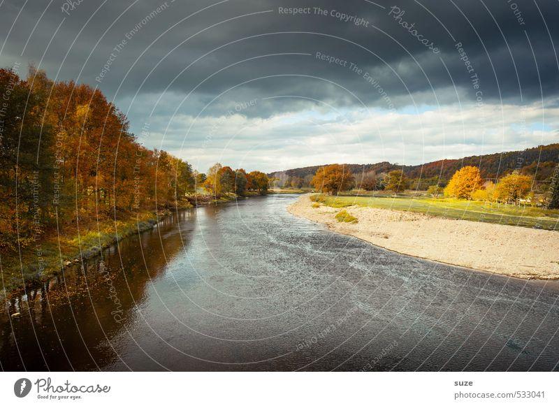 Muldental Ferien & Urlaub & Reisen Umwelt Natur Landschaft Pflanze Urelemente Wasser Himmel Wolken Gewitterwolken Herbst Wetter Baum Wiese Flussufer authentisch