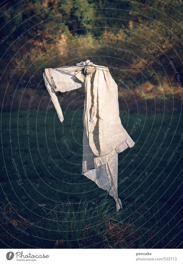 erscheinung Mensch Natur schön Landschaft Einsamkeit Wald Gesicht Gefühle Kunst Stimmung Feld Schilder & Markierungen Zeichen Zaun Leidenschaft Engel