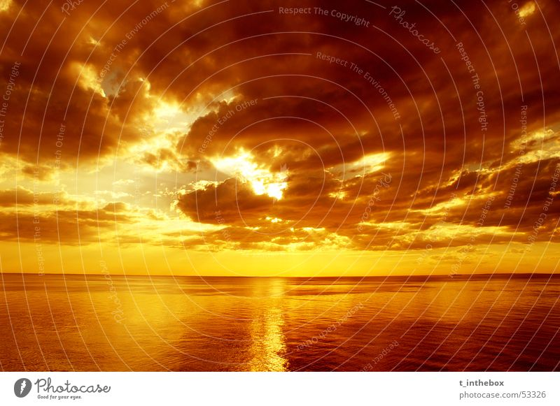 Sunset Sonnenuntergang Monochrom Australien Himmel sun sea water orange Sepia saturation clouds horizon nice mornington peninsula clear no waves reflection