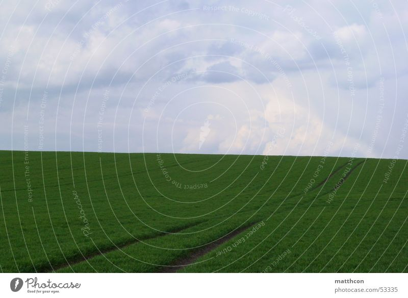 Way to heaven Feld Frühling Isserstedt springen Außenaufnahme bedeckter himmel Wege & Pfade Getreide bevor der regen kommt clouds way field Landschaft