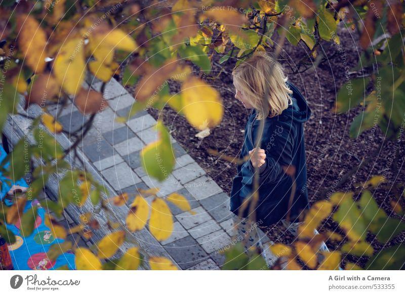 through Mensch Kind Natur Mädchen Blatt Freude feminin Herbst Spielen Garten Aktion blond Kindheit verstecken unten Terrasse