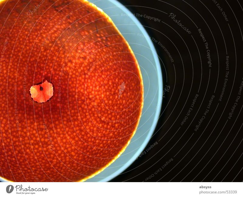 orange space plate blau Ernährung Lampe Lebensmittel Frucht lecker Teller Am Rand Leuchtrand