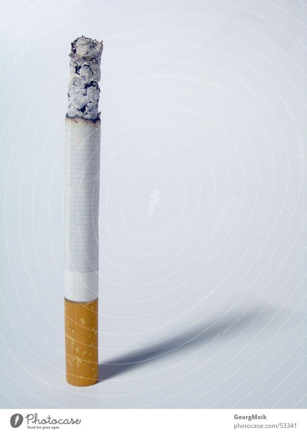 das leben ende 20 braun Armut Vergänglichkeit Rauchen Zigarette brennen glühen Zündschnur verderblich Vor hellem Hintergrund