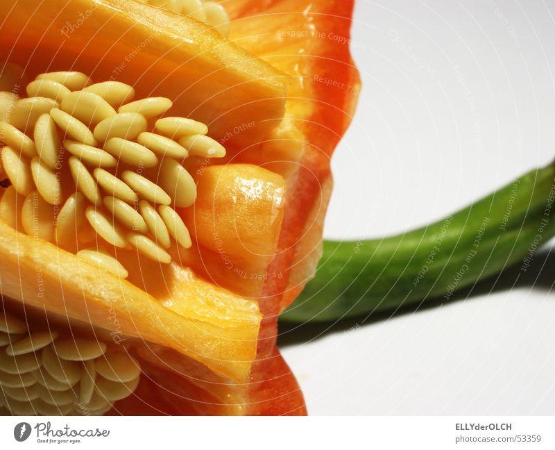 Paprika rot grün Küche Vitamin Kerne kochen & garen Gesundheit frisch Ernährung aufgegessen Gemüse Makroaufnahme Nahaufnahme Samen