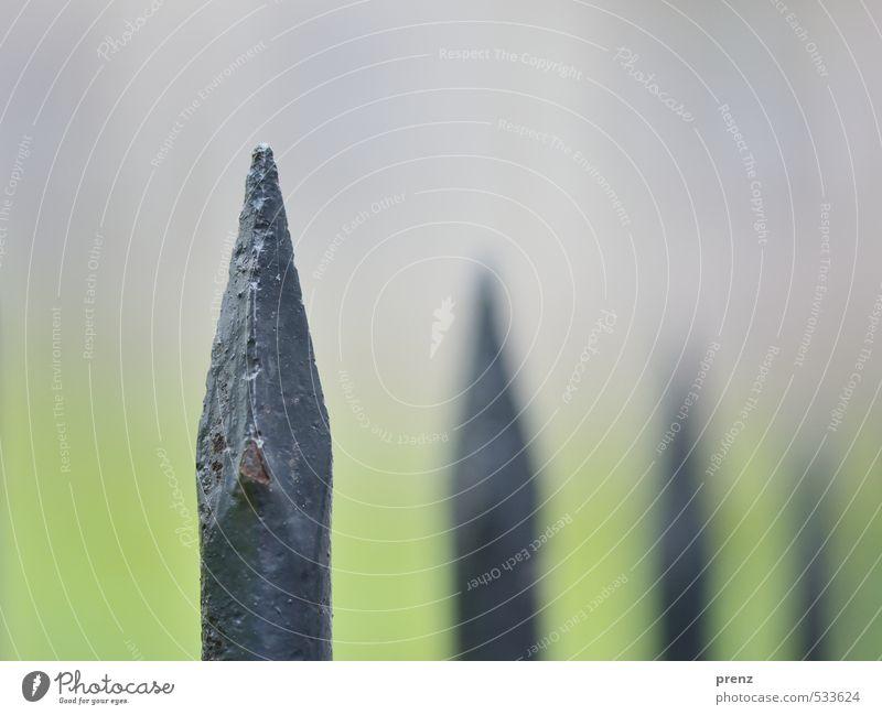 Spitze Metall grau grün Linie Perspektive Zaun Zaunpfahl alt Eisen Eisenstangen Nahaufnahme Makroaufnahme Farbfoto Außenaufnahme Menschenleer Textfreiraum oben