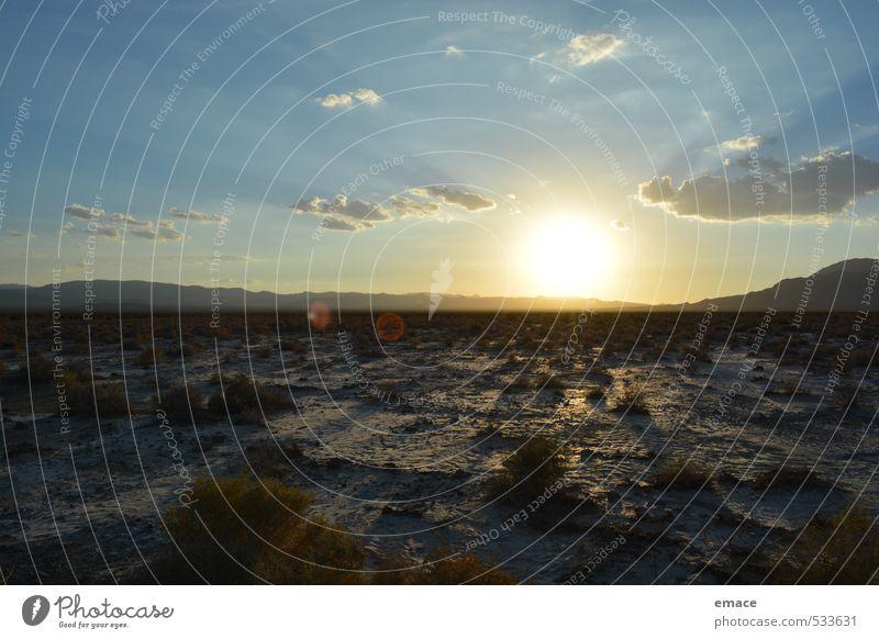 Sunset Umwelt Natur Landschaft Pflanze Erde Sand Himmel Wolken Horizont Sonne Sonnenaufgang Sonnenuntergang Sonnenlicht Sommer Wetter Schönes Wetter Wärme Dürre
