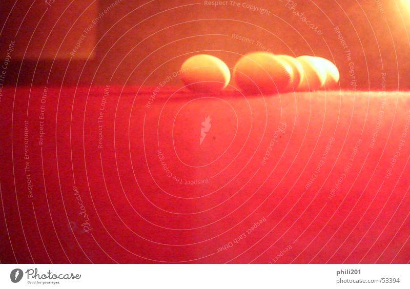 Ei Ei Ei rot Unschärfe Licht Horizont Teppich verwaschen Anhäufung mehrere Schatten liegen