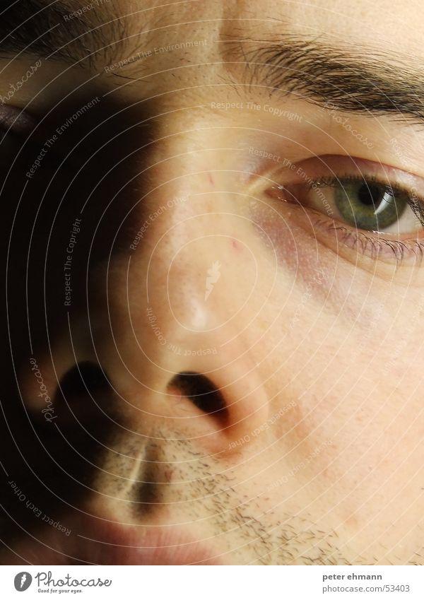 Gesicht Mann grün Auge Nase Bart Falte Gesichtsausdruck Wange Wimpern Augenbraue Stirn Nasenloch unrasiert