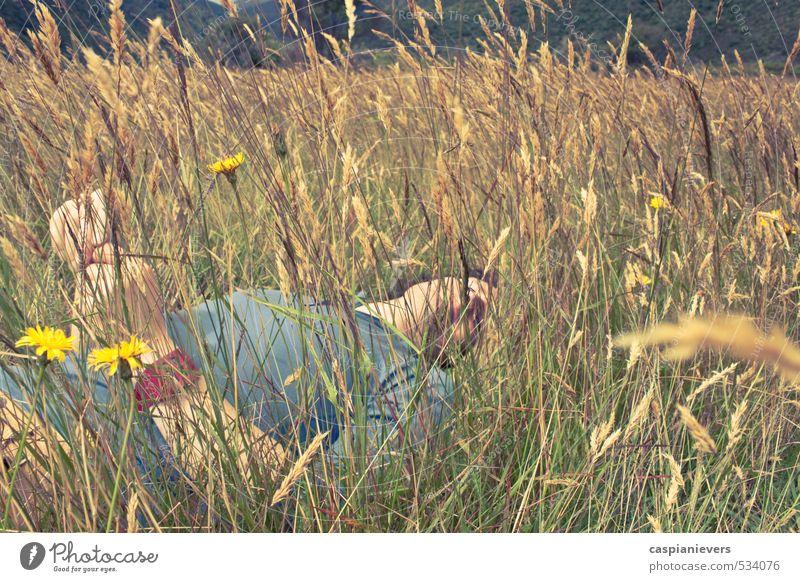 Mensch Natur Jugendliche Mann Sommer Erholung ruhig Junger Mann 18-30 Jahre Erwachsene Umwelt Wiese Gras Freiheit orange schlafen