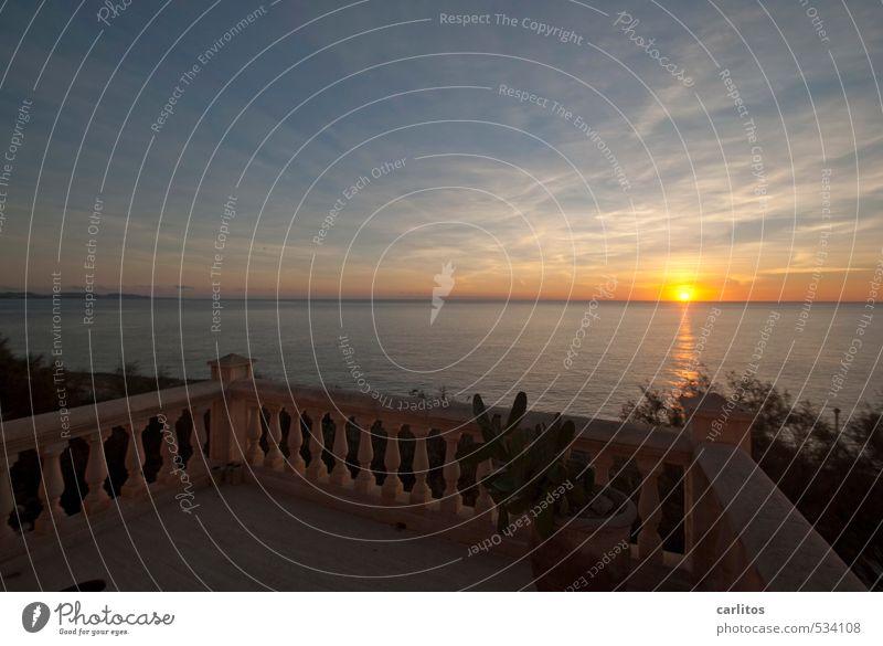 Der Meerblick ist wieder da Umwelt Natur Urelemente Luft Wasser Himmel Horizont Sonnenaufgang Sonnenuntergang Sommer Schönes Wetter Wärme Balkon Terrasse