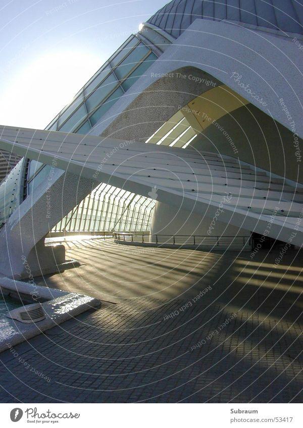calatrava Beton Schlagschatten Licht Schattenspiel Valencia Spanien Kunst Wissenschaften Außenaufnahme Architektur modern Kino Theater Museum