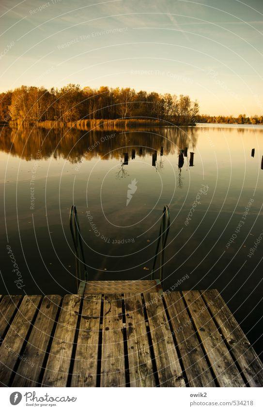 Olba Umwelt Natur Landschaft Wasser Wolkenloser Himmel Horizont Herbst Klima Wetter Schönes Wetter Pflanze Baum Seeufer Insel Holz Metall Idylle Freibad Badeort