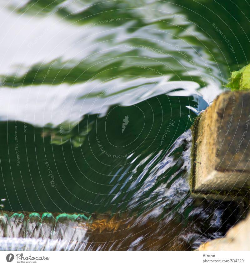 umspült Wasserkraftwerk Natur Fluss Bach Staustufe Flußwehr Menschenleer Brücke Pfosten Holz Flüssigkeit Geschwindigkeit grün weiß gefährlich Bewegung