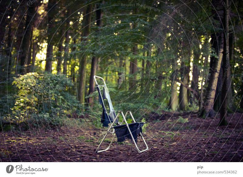 waldesruhe Natur alt Pflanze Sommer Baum Erholung ruhig Wald Umwelt Metall Sträucher Schönes Wetter einzeln kaputt Vergänglichkeit Stuhl