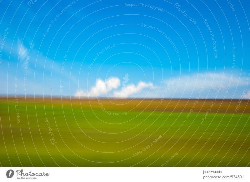 m/s Ferien & Urlaub & Reisen blau grün Farbe Landschaft Wolken Tier Ferne Bewegung Wege & Pfade Horizont Feld frei Geschwindigkeit Ausflug einfach