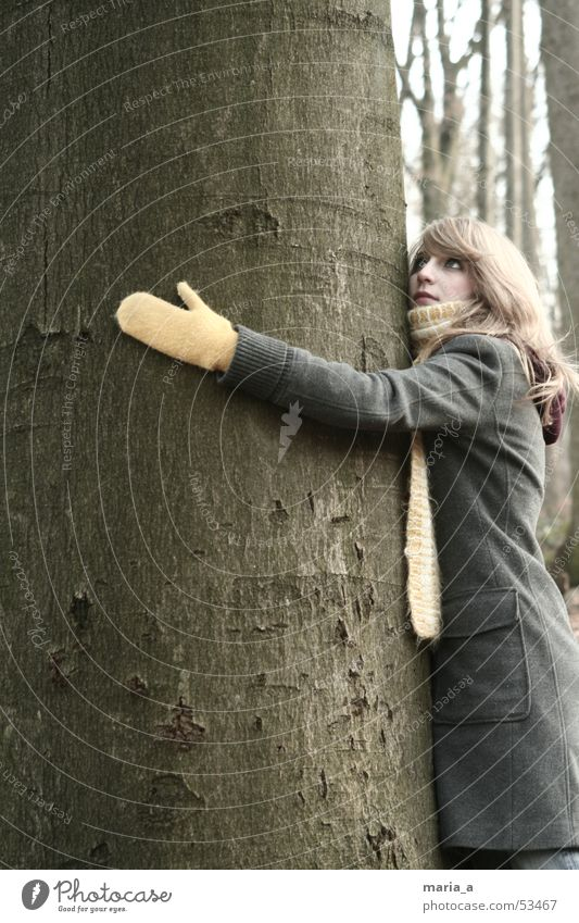 lass dich drücken Umarmen Baum mögen Handschuhe Schal Mantel Wald Herbst Winter