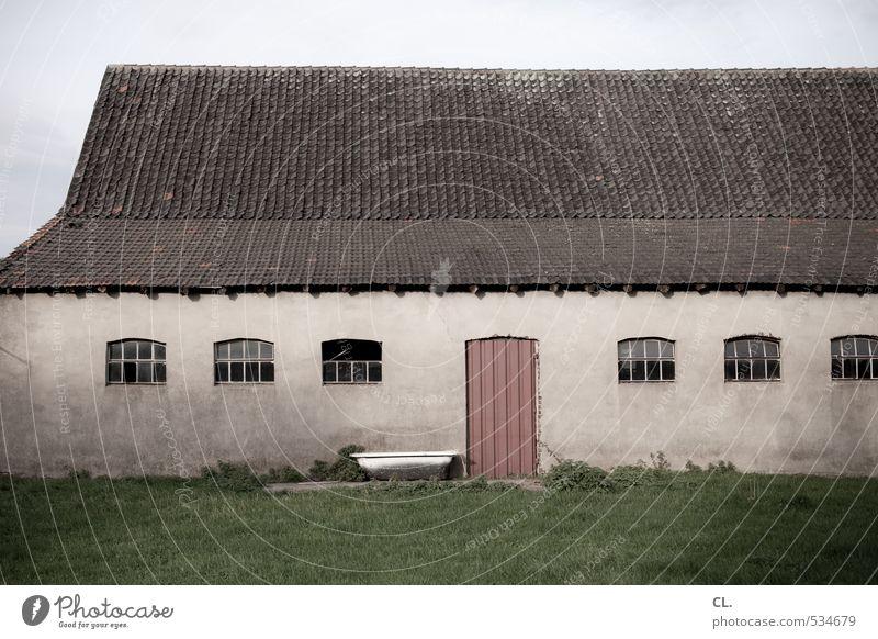 des bauern hof Umwelt Natur Landschaft Gras Wiese Feld Menschenleer Haus Gebäude Mauer Wand Fenster Tür Dach trist Bauernhof Landwirtschaft Viehtränke