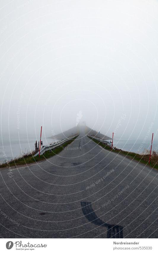 Hasenfuß Meer ruhig dunkel Straße Wege & Pfade Stimmung Wetter Regen Nebel Urelemente bedrohlich Abenteuer Brücke Zeichen Unendlichkeit Güterverkehr & Logistik