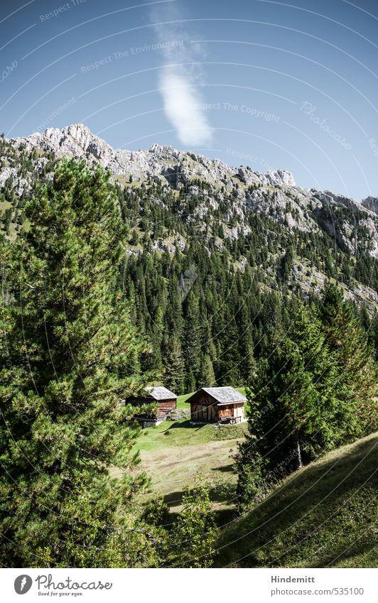 Im Grünen Ferien & Urlaub & Reisen Tourismus Himmel Wolkenloser Himmel Sommer Schönes Wetter Baum Wiese Wald Hügel Felsen Alpen Berge u. Gebirge Gipfel