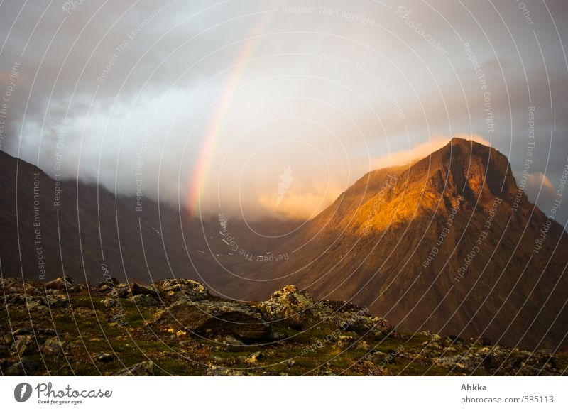 Verbindung nach oben hergestellt Natur Ferien & Urlaub & Reisen Landschaft Wolken Ferne Berge u. Gebirge Gefühle Glück Gesundheit Stimmung wandern Ausflug