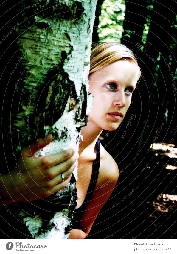 Wald Frau Natur Hand Baum Kopf blond Schulter Bundesland Kärnten